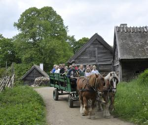 The horse-drawn carriage