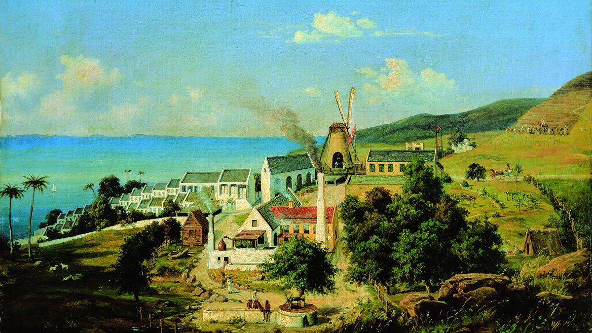 The Plantation System